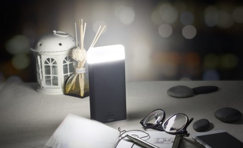 Аккумулятор внешний универсальный Rock Light Stone Series 8000mAh, черный